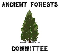Ancient Forests Committee